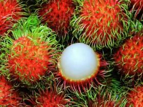 红毛丹怎么吃不沾核皮?这两个方法你知道吗?